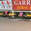 Albion Park 07 05 18 - Photos taken by Michael McInally and Toby Coutts