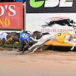 Albion Park 17 05 18 - Photos taken by Michael McInally and Toby Coutts