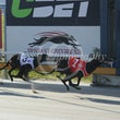 Albion Park 13 06 18 - Photos Taken By Toby Coutts