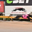 Albion Park 17 06 18 - Photos taken by Michael McInally