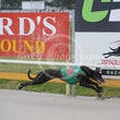 Albion Park 11 07 18 - Photos Taken By Toby Coutts