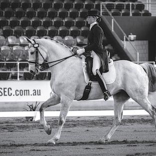 Saddleworld 2014 Brisbane CDI - Thursday Competition images