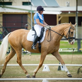 Pan Pac Masters - Sunday Dressage - Images from the Pan Pacific Masters Dressage are available as individual digital images (private or commercial use) or...