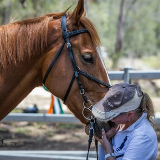 IDSHS (AUST) Inspection & Registration Day - Thank you Cushavon Park for the opportunity to come along and snap away... there are individual prices as...