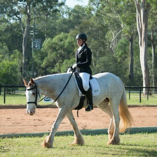 PRARG 2* Dressage 2015 - Here are some images from the PRARG 2* 8th March -  packages available for 2 - 10 digital images.  Enquiries - email donna@replayclassifieds.com.au...