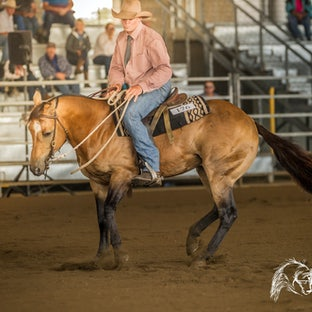 ARBC Stockmans Challenge - Australian Reining held the Stockman's Challenge on the Saturday morning.  Images can be purchased individually or in packages...