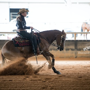 PCRS Friday 2016 - Only 1-2 images per horse have been uploaded due to the number of horses competing on these days.  If you are interested in viewing...