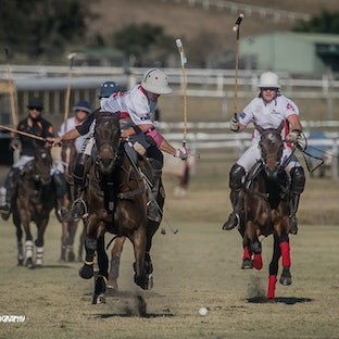 Monte Vista Polo 19 August 2017 - Snap shots of the SEQ Polo events - single images and packages of multi images available for digital downloads