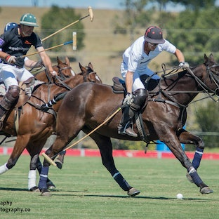2017 Infiniti Cup Day 1 - Images of the  the prestigious annual Infiniti Cup are available as digital images or digital packages.  More images will be...