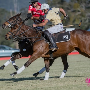 Gold Cup Polo 2017 - Sunday Finals - Sundays polo images are now uploaded. You have options of digital downloads (singular & package options) + prints....