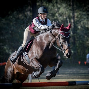 SE Qld Zone 2 Unofficial Showjumping  2018 Ring 3 - Images maybe purchased online for digital downloads (single images & multi image packages).   Quality...
