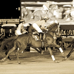 Phar Lap Hero to a Nation - The Arena Spectacular at this year's Gold Coast Show.  A showcase of the horses, riders and crew