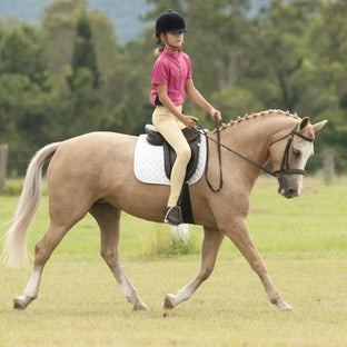 Tamborine Pony Club Open Unofficial Dressage - Tamboring Pony Club Dressage 3.5.11 All photos special discount $15 x 1 image or discount for multiple...