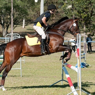 LVRC Hunter Trials - Super SPECIAL for all riders $45 (includes postage)  DVD with your images in high resolution  - email donna@localhorsemagazine.com.au...