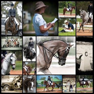 YR Interschool Dressage Champs - Caboolture - PLEASE READ:-  There were so many lovely horses at the event and so many pics to go thru - this gallery has...