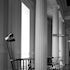 Charleston Chairs - A beautiful black and white photo taken in one of Charleston's many historical museums. Recommended print size under 15x20.