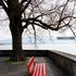 Park Bench Lindau - Feelings of melancholy when sitting on these red benches, this works best at a max size of 15x20.