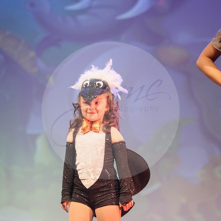 At The Zoo - House Of Dance Disco ... beyond the mirror ball! House of Dance presented their end of year dance concert at Mt Nelson Theatre in Hobart,...