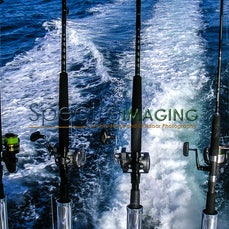 Sports & Recreation - Watersports - Images Focusing On Water Sports Activities