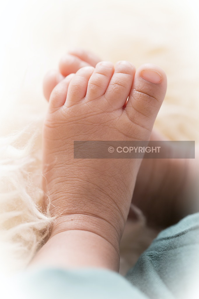 Norwest newborn Photographer