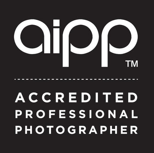 AIPP-logo-for-website-ME