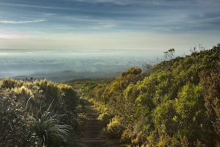 Down into the Morning - Always, always look back regularly when hiking. Some of the best views are over your shoulder.