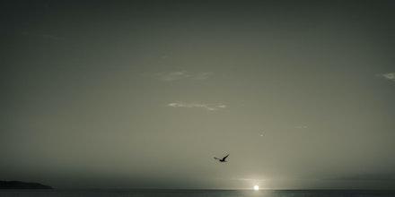 Calm Across the Waves