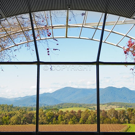 A room with a view, Chandon winery