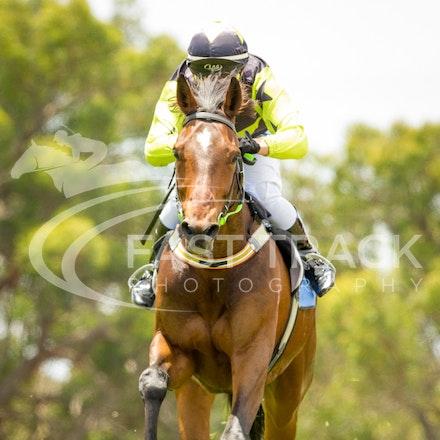 Race 1, Defiable, Courtney Pace_05-12-15, Balnarring Picnics, WIN_0016