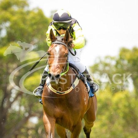 Race 1, Defiable, Courtney Pace_05-12-15, Balnarring Picnics, WIN_0017