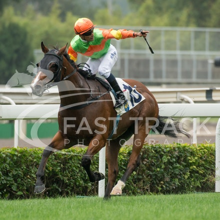 Race 1, Jolly Jolly, Karis Teetan_13-12-15, Sha Tin, WIN_1852