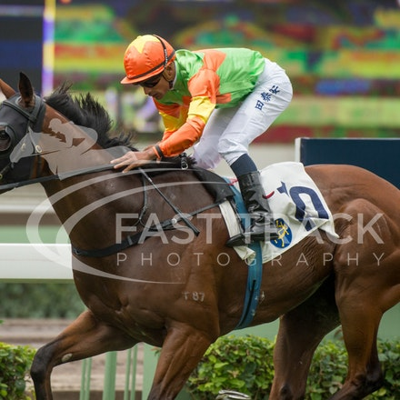 Race 1, Jolly Jolly, Karis Teetan_13-12-15, Sha Tin, WIN_1859