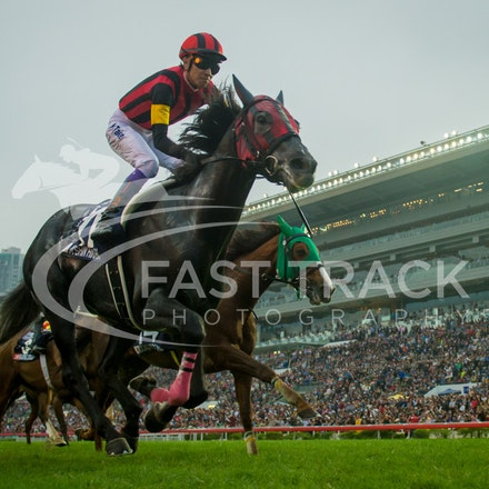Hong Kong International Races - 13 December 2015
