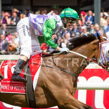 Flemington Melbourne Cup Day - 3 November 2015