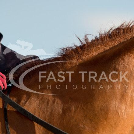 Tas Racing, General_17-02-16, Launceston, Sharon Chapman_079