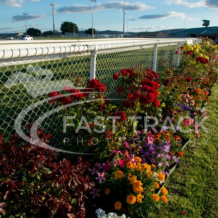 Tas Racing, General_17-02-16, Launceston, Sharon Chapman_092
