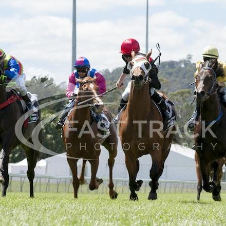 Race 1, Global Squire, Anthony Darmanin_21-02-16, Launceston, Sharon Chapman, WIN_339
