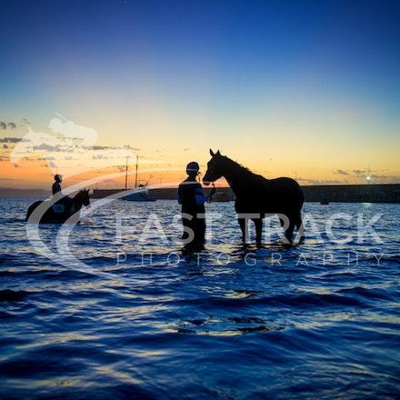Warrnambool Beach, Darren Weir_04-03-16_0016