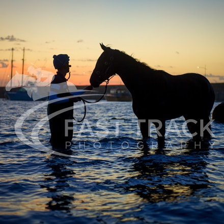 Warrnambool Beach, Darren Weir_04-03-16_0018