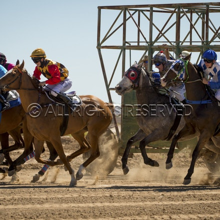 Race 1, Starting Gate_27-08-16, Betoota_0017