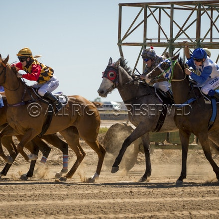 Race 1, Starting Gate_27-08-16, Betoota_0018
