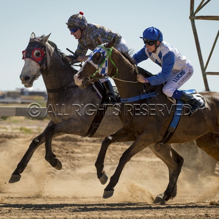 Race 1, Starting Gate_27-08-16, Betoota_0019