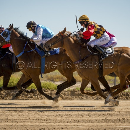 Race 1, Starting Gate_27-08-16, Betoota_0021