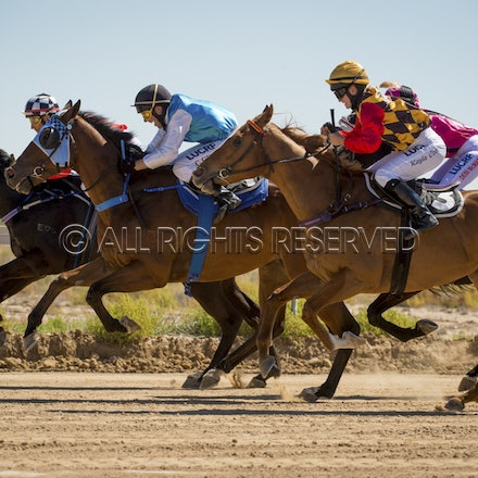 Race 1, Starting Gate_27-08-16, Betoota_0022