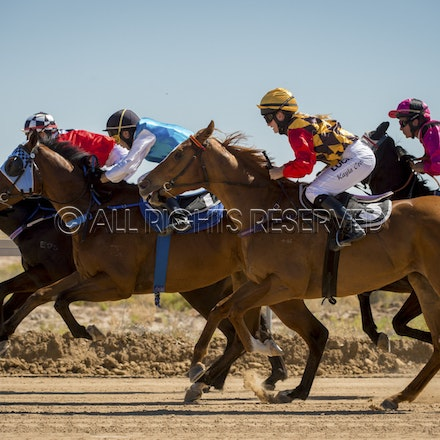 Race 1, Starting Gate_27-08-16, Betoota_0023