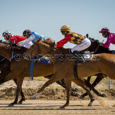 Race 1, Starting Gate_27-08-16, Betoota_0025