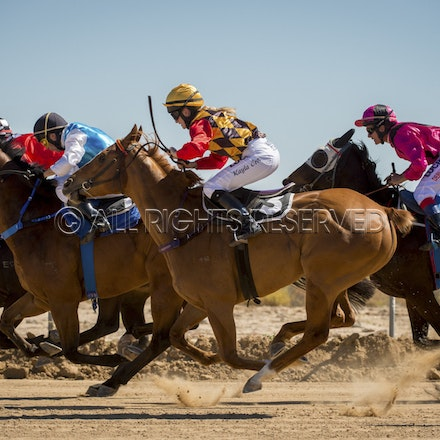 Race 1, Starting Gate_27-08-16, Betoota_0027