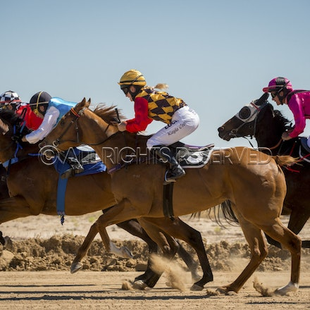 Race 1, Starting Gate_27-08-16, Betoota_0028