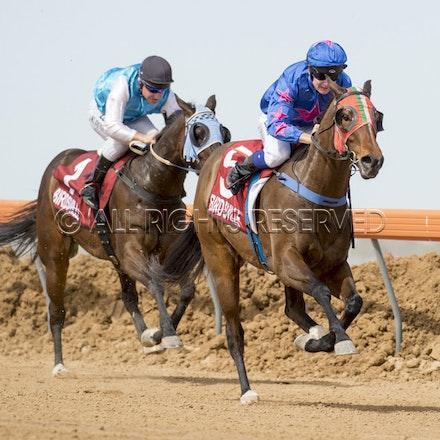 Race 1, Nordic Red, Clayton Gallagher_04-09-16, Birdsville, WIN_558