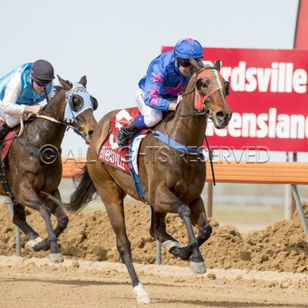 Race 1, Nordic Red, Clayton Gallagher_04-09-16, Birdsville, WIN_560